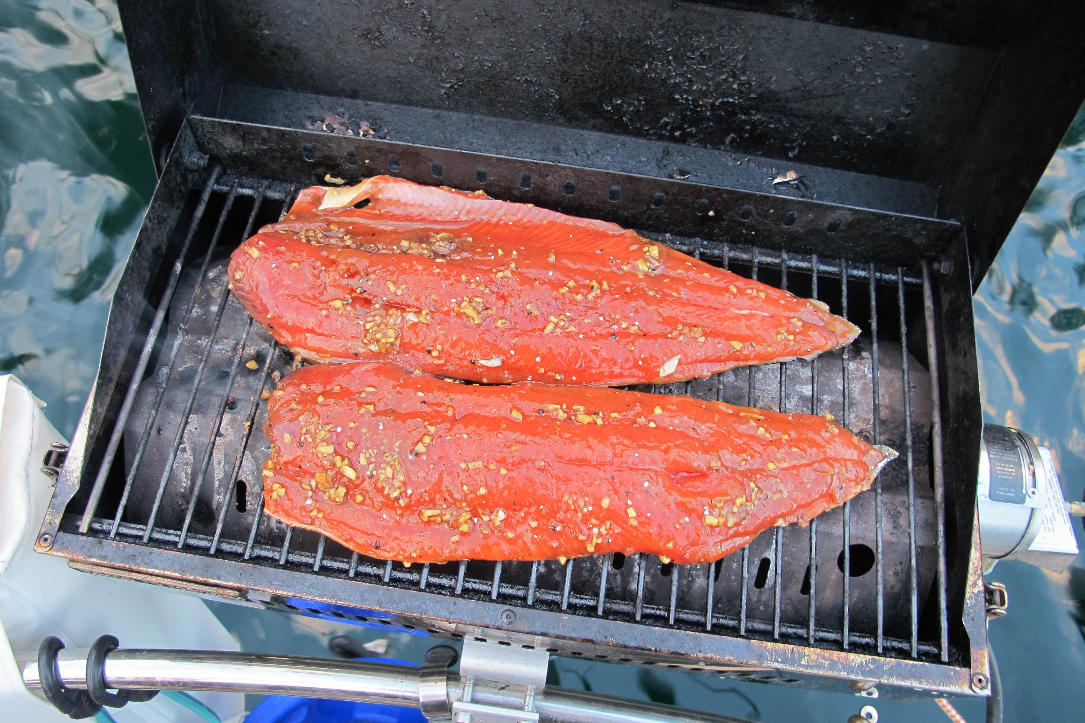 Our new favorite salmon recipe. Garlic, ginger, tamari, olive oil, lime and honey marinade. I believe we won the Salmon Cook-Off against the Goose!